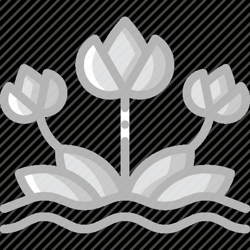 Summer, flower, nature icon