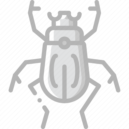 beetle, nature, summer icon