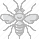 nature, summer, wasp icon
