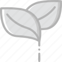 leaf, nature, summer icon