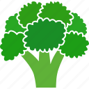 brassica, broccoli, cabbage, food, green, oleracea, vegetable icon