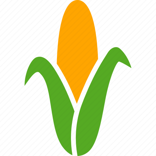 agriculture, corn, ear, maize, starch, sweetcorn, syrup icon