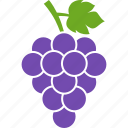 berries, grape, grapes, leaf, purple, vineyard, wine icon