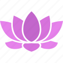 buddhism, flower, lotus, nelumbo, nucifera, purple, sacred icon