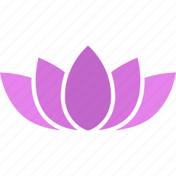 buddhism, flower, lotus, nelumbo, nucifera, purple, sacred icon