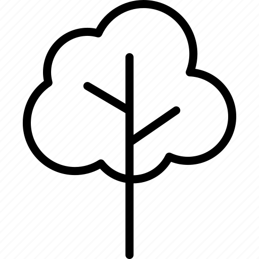 botany, branches, nature, park, plant, timber, tree icon