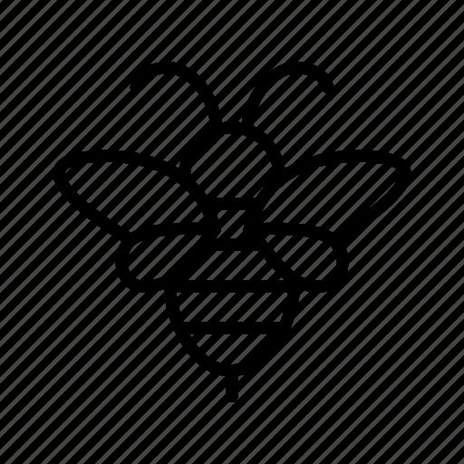 animal, bee, fauna, honey, honey bee, honeybee, nature icon