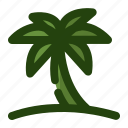 palm, plant, summer, tree, tropical