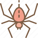 nature, spider, summer icon