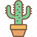cactus, nature, summer icon