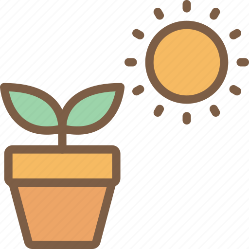 nature, plant, summer icon