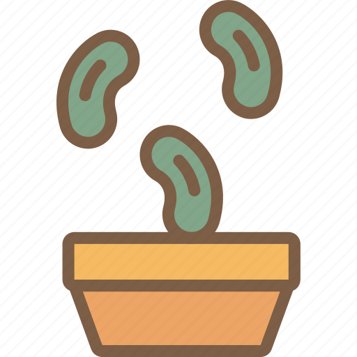 bean, nature, seeds, summer icon