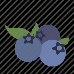 berries, blueberries, dessert, farm, fruit, health, smoothie icon