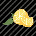 california, fresh, fruit, healthy, juice, lemon, summer