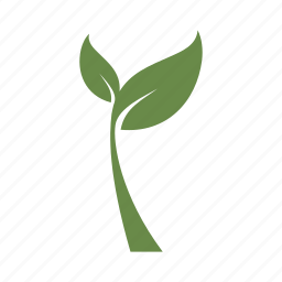 flower, grow, growth, nature, plant, spring, tree icon