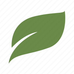 green, grow, leaf, nature, plant, seed, wind icon