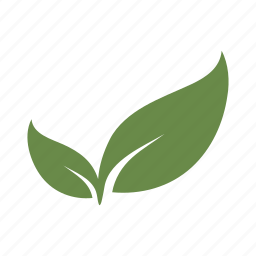 grow, growth, leaf, leaves, nature, plant, seed icon