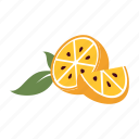 fresh, fruit, healthy, juice, nature, orange, section icon