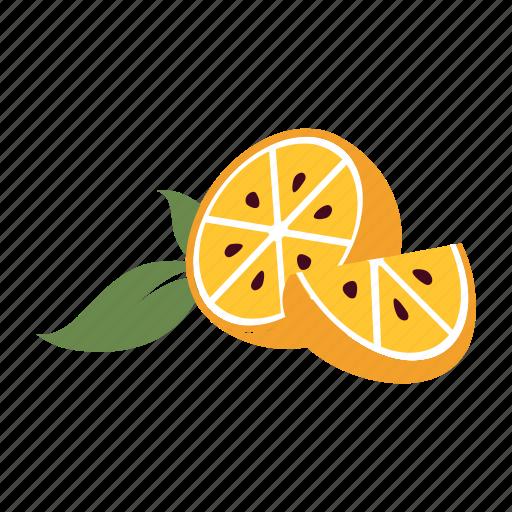 fresh, fruit, healthy, juice, nature, orange, section icon