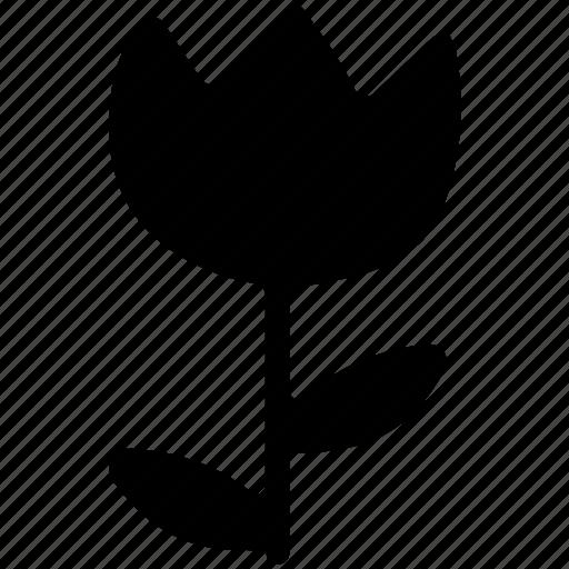 flower, greenery, nature, tulip, tulip stem icon