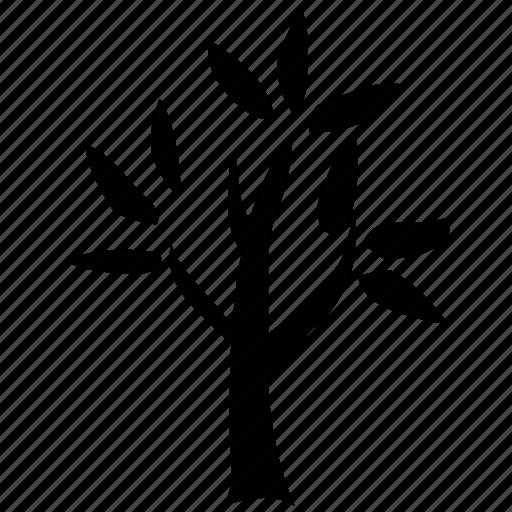 generic tree, leafy, leafy tree, nature, tree icon