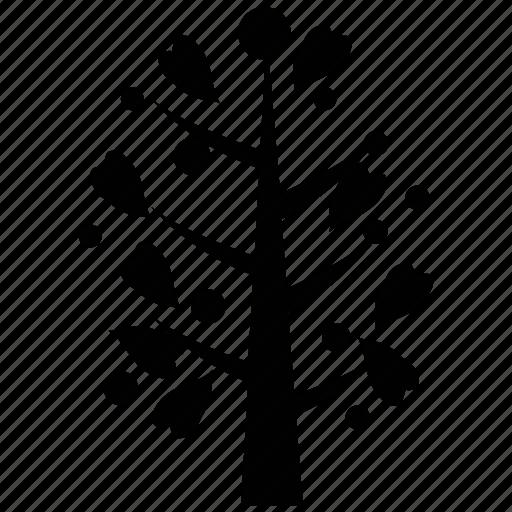 generic tree, heart shape leaves, leafy tree, tree icon