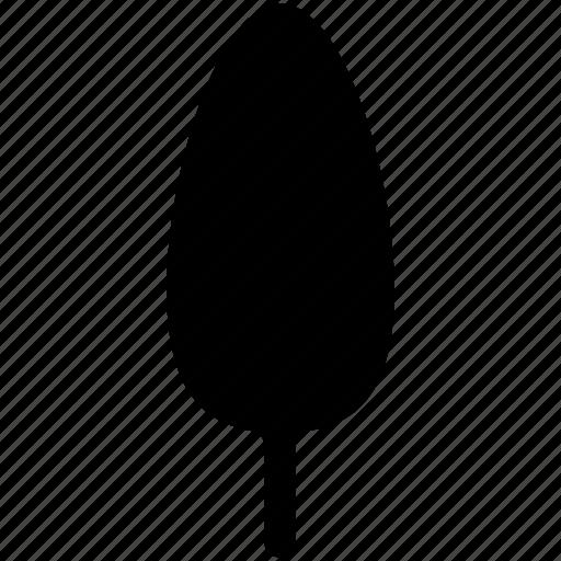 cypress, generic tree, nature, tree icon