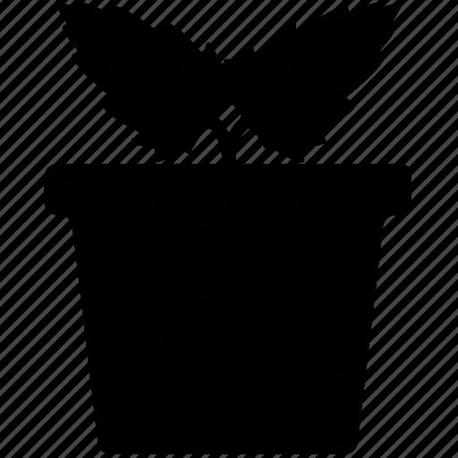 holly in pot, mistletoe, mistletoe in pot, plant, plant pot, pot icon