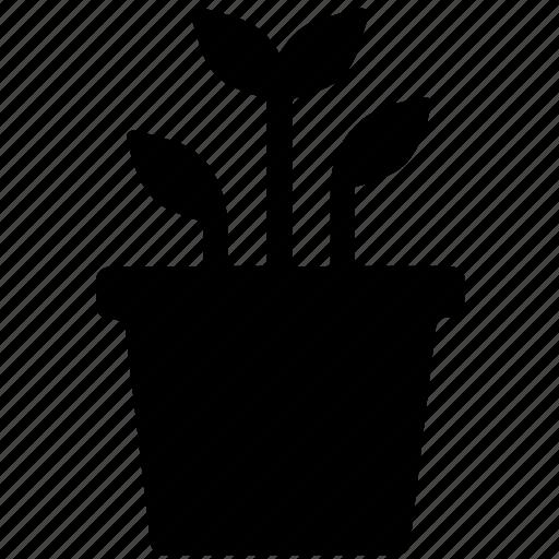 leafy, leafy plant nature, plant, plant pot icon