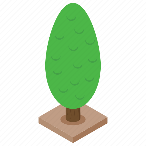 forest, nature, pine tree, plant, tree icon