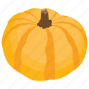 food, fruit, halloween pumpkin, healthy diet, pumpkin icon