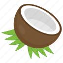 coconut, coconut fruit, coconut shell, half coconut, tropical fruit icon