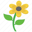 flower, marigold, nature, sunflower, yellow flower icon