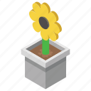 flower, nature, outdoor plant, pot plant, sunflower icon