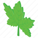 fall leaf, leaf, maple leaf, oak leaf, tree leaf icon