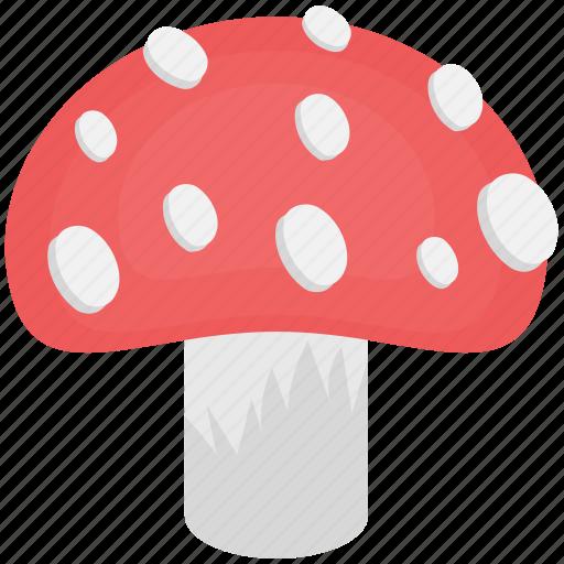 edible, food, fungi, mushroom, toadstool icon