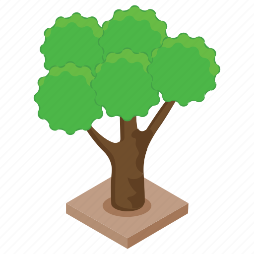 forest, nature, oak tree, plant, tree icon