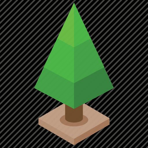 conifer tree, nature, pine tree, spruce tree, tree icon
