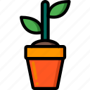 nature, plant, summer icon