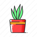 flower, natural, nature, plant, pot, tree