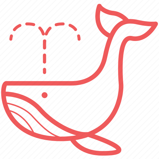 blue whale, mammal, nautical, ocean, travel, whale, whale watch icon