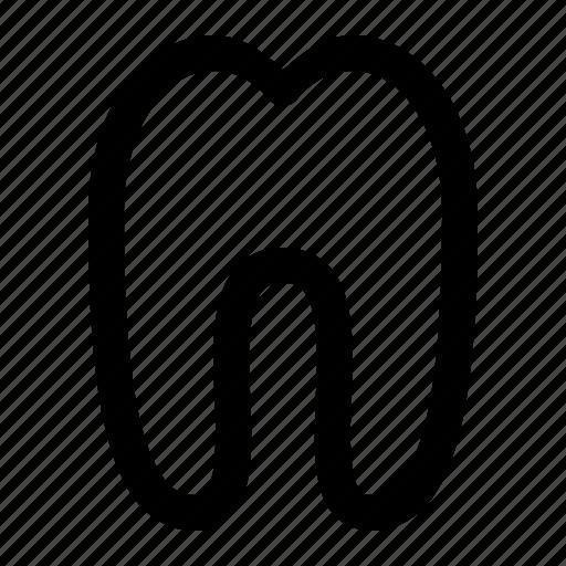 dental, dentist, health, medical, tooth icon