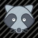 animal, cartoon, face, head, raccoon, wildlife