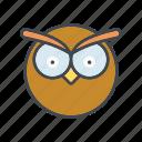 animal, bird, cartoon, face, head, owl, wisdom icon
