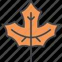 autumn, fall, leaf, maple, nature, plant, season icon