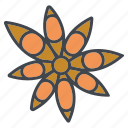 dried, food, ingredients, seasoning, spice, star anise icon