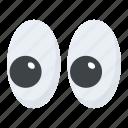 eyeballs, eyes, eyesight, iris, organ icon