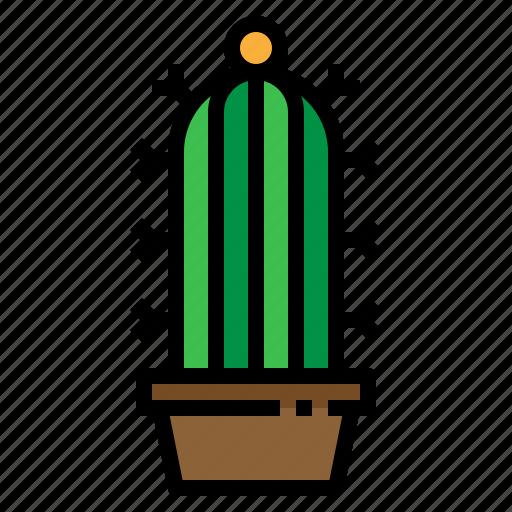 cactus, ecology, green, plant icon