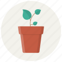 eco, flower, grow, leaves, plant, pot, seed icon