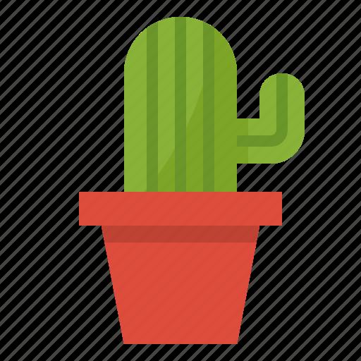 botanical, cactus, desert, plant icon